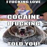 Alice meets cocaine bear