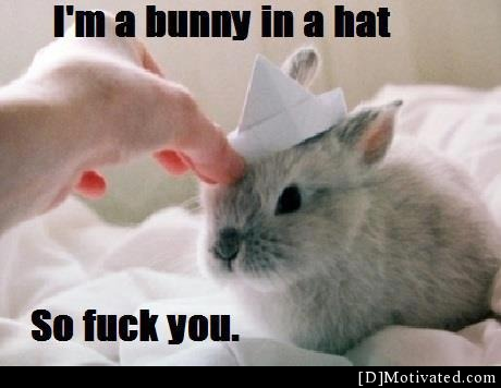 I'm A Bunny In A Hat...................