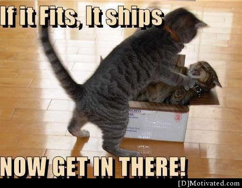 If It Fits, It Ships