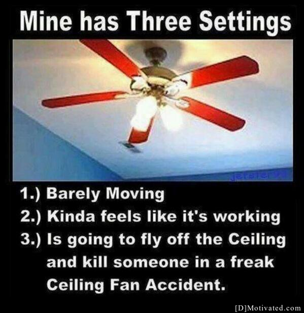 Basic Fan Settings