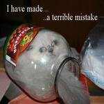 a very terrible mistake