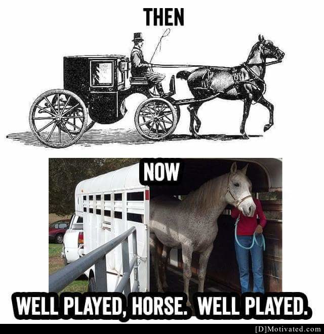 Well Played, Horse