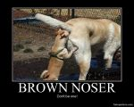 brown noser