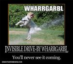 Invisible drive-by wharrgarbl