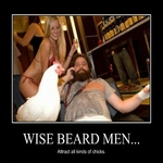 wise beard men