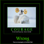 courage, wrong