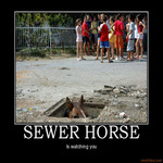 sewer horse