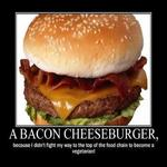 a bacon cheeseburger