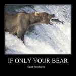if only your bear